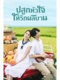 CHH1222 : My Goddess ปลูกหัวใจให้รักผลิบาน (พากย์ไทย) DVD 4 แผ่น