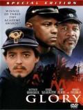 EE0346 : Glory เกียรติภูมิชาติทหาร (1989) DVD 1 แผ่น