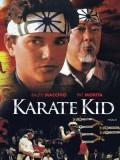 EE0603 : The Karate Kid Part 1 (1984) (ซับไทย) DVD 1 แผ่น