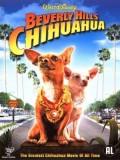 EE2701 : Beverly Hills Chihuahua คุณหมาไฮโซ โกบ้านนอก DVD 1 แผ่น