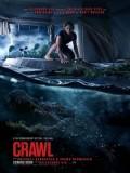EE3360 : Crawl คลานขย้ำ (2019) DVD 1 แผ่น