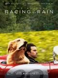 EE3378 : The Art of Racing in the Rain อุ่นไอหัวใจตูบ (2019) DVD 1 แผ่น