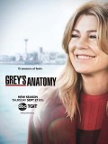 se1810 : ซีรีย์ฝรั่ง Grey's Anatomy Season 15 [ซับไทย] DVD 5 แผ่น