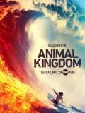 se1833 : ซีรีย์ฝรั่ง Animal Kingdom Season 4 [ซับไทย] DVD 3 แผ่น