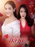 st1772 : ละครไทย สองนรี 2562 DVD 5 แผ่น