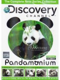 ft058:สารคดี Discovery Channel Pandamonium แพนด้าหมีน้อยตัวอ้วน  2 แผ่นจบ