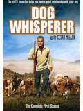 ft074 : สารคดี  The Dog Whisperer  10  แผ่น