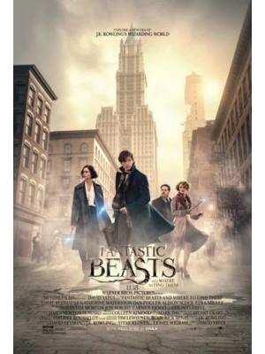 EE2328 : Fantastic: Beasts And Where To Find Them สัตว์มหัศจรรย์และถิ่นที่อยู่ DVD 1 แผ่น