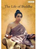 ft036 :สารคดี BBC: The Life Of Buddha DVD Master 1 แผ่นจบ