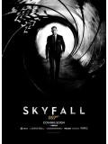 E829 : Skyfall 007 พลิกรหัสพิฆาตพยัคฆ์ร้าย (2012) DVD 1 แผ่น